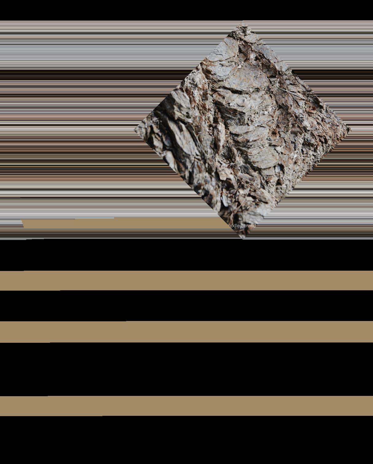 stk_web_grafiken6
