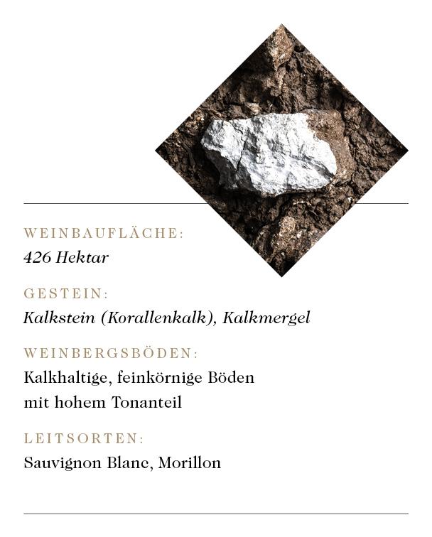 stk_web_grafiken_deutsch7